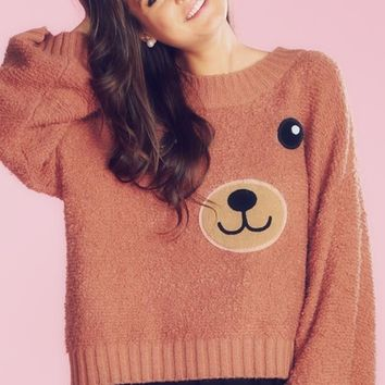 Wildfox Couture Teddy Girl Chunky Oversized Sweater in Pudding Cup