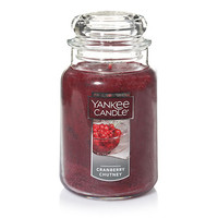 Cherries On Snow™ Large Classic Jar Candles - Yankee Candle