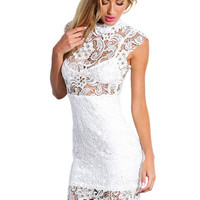 Sheer Panel Lace Bodycon Mini Dress