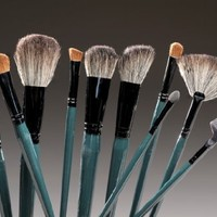 10 Pc. Teal Brush Set