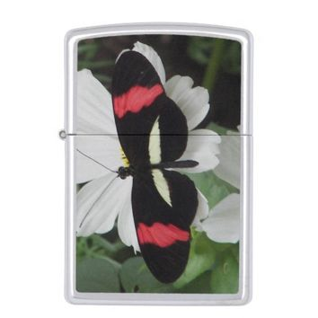 Tropical Postman Butterfly Photo Zippo Lighter