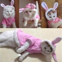 New Bunny Rabbit Cat Jacket