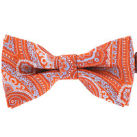 Tok Tok Designs Pre-Tied Bow Tie for Men & Teenagers (B259)