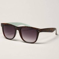AE Tortoiseshell Icon Sunglasses | American Eagle Outfitters