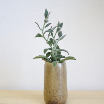 Small Wood Fired Pottery Vase, Warm Beige