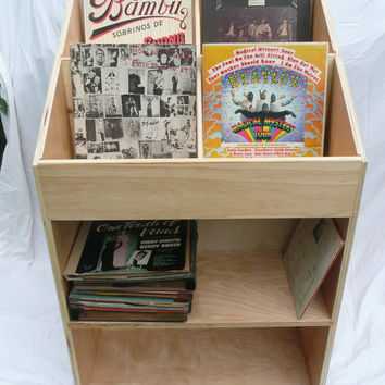 Vinyl Record Album Storage Bin   Double