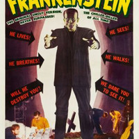 Frankenstein Movie poster 24inx36in Poster