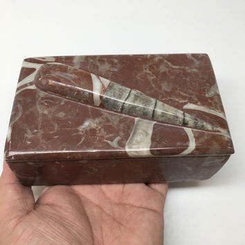 "666g, 5""x3""x2.2"" Rectangular Fossils Ammonite Red Jewelry Box @Morocco, MF636"