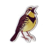 Eastern Meadowlark Bird Magnet