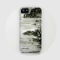 iPhone 5 case, iPhone 5, birch tree, woods, - Birch, iPhone 5 case