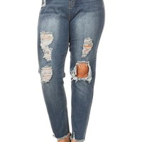 Plus Size High Waist Distressed Skinny Jeans
