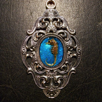 Huge Blue Pygmy Seahorse Specimen in Resin Cameo Necklace