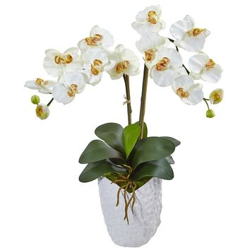 Silk Flowers -Double Cream Phalaenopsis Orchid In White Vase Artificial Plant