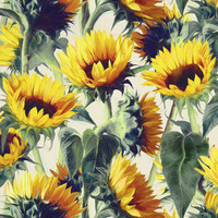 Sunflowers Forever Art Print by Micklyn
