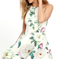 Hydrangea Haven Cream Floral Print Skater Dress