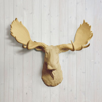 The Alberta Large Khaki Brown Faux Taxidermy Resin Moose Head Wall Mount | Khaki Brown Moose w/ Colored Antlers