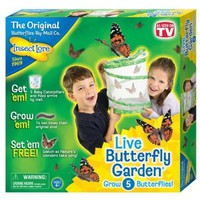 Insect Lore 01010 Original Butterfly Garden with Voucher