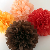 Set of 18 tissue paper pom poms,party poms,pomsparty/wedding poms/party decor/birthday decorations/hanging pompoms/paper poms/nursery pompom
