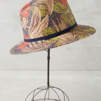 West Palm Fedora by Anthropologie in Navy Size: One Size Hats