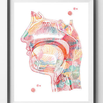 Respiratory system watercolor print Nose Mouth Throat Larynx function anatomy art poster medical art air pathway speech terapy art print [5]