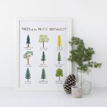 Pacific Northwest Trees Art Print