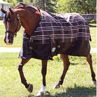 Nordic 600D Heavyweight Horse Turnout-Big Dee's Tack & Vet Supply