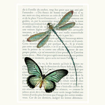 COUPON SALE Teal blue green Dragonfly Butterfly printed as dictionary art print wall decor on antique book page choice.    Item No. C852