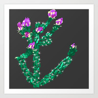 Flowering Cactus Art Print by K_c_s