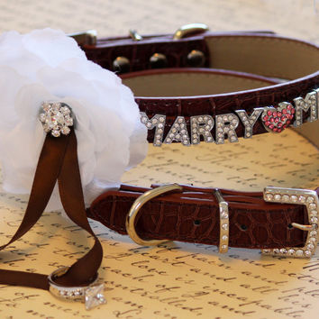 MARRY ME, Dog Collar, Brown Leather dog Collar with Marry me letters and white Flower ,Proposal Idea