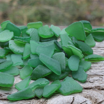 Kelly Green Sea Glass Bulk  Beach Glass Bulk Sea Glass Art Supplies SMALL