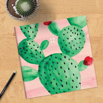 Prickly Painted Cactus - NEW!