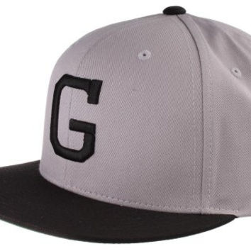 Grizzly Griptape Vintage G Snapback in Grey