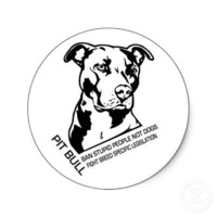 Pitbull stickers from Zazzle.com