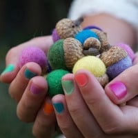 Customizable Rainbow Felted Acorns - Set of 12 Made from REAL Acorn Caps, You Pick the Colors