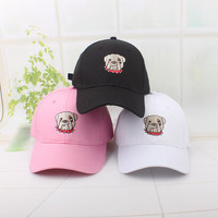 Summer Gift Doggy Retro Embroidery Baseball Cap Unique Casual Hat a12456