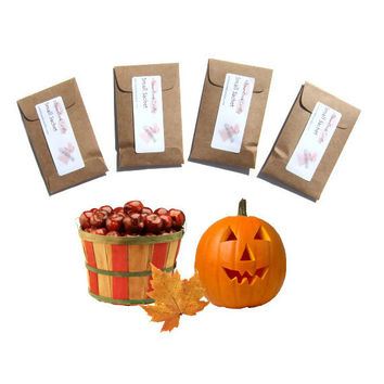 4 Pumpkin Pickin Scented Sachets-  Autumn Home Fragrance - DIY Halloween Party Favors - Kraft Brown Orange - Rustic Modern