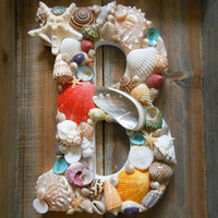 Beach Decor Seashell Letters - Initial Letter B - Colorful Seashell Letters - Beach Sign - Seashell Decor, Beach Decor, Coastal Home decor