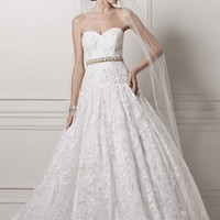 Strapless Ball Gown with All Over Lace Appliques - David's Bridal
