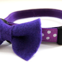Purple Bow and Collar Combo