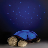 The Constellation Projecting Turtle Night Light - Hammacher Schlemmer