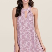 Knoxville Lace Halter Shift Dress