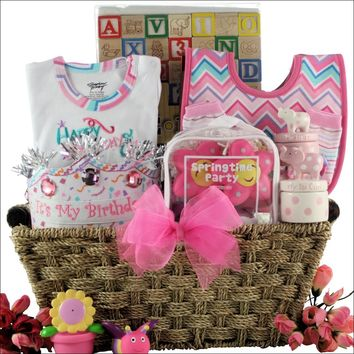 Baby's First Birthday: Large Baby Girl Birthday Gift Basket