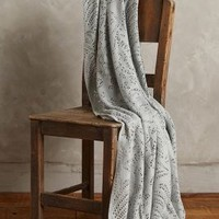 Evelyn Throw by Anthropologie