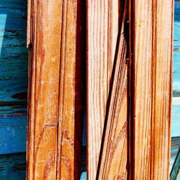Varnished Salvage Beadboard
