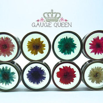 "Single or Double Flare Flower Plugs / Gauges. Daisy in Surgical Steel. 00g / 10mm, 7/16"" / 11mm, 1/2"" / 12.5mm, 9/16"" / 14mm, 5/8"" / 16mm"