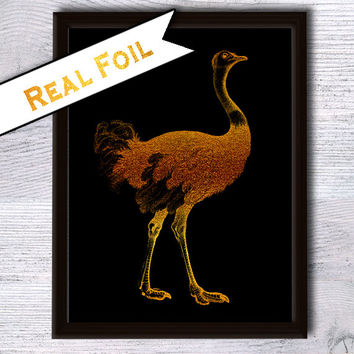 Ostrich poster Animal art print Real gold foil decor Ostrich print Ostrich real foil poster Home decoration Animal real foil print G13