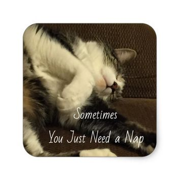 Funny Sleeping Cat Square Sticker
