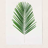 Miles Of Light Palm Art Print - Urban Outfitters