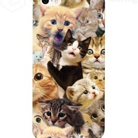 Surprised Cats Phone Case