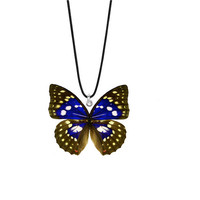 Real Japanese Emperor Butterfly Necklace